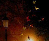 Animated Romantic Autumn