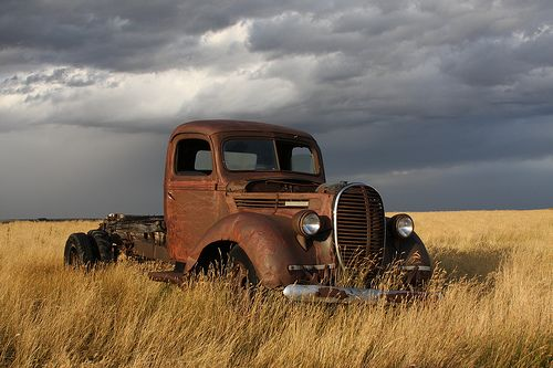 1939 Ford truck in a field in Southern Alberta