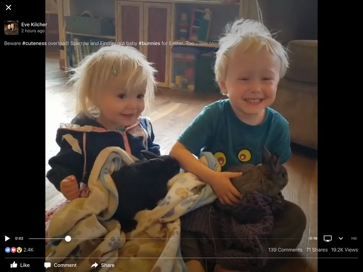 Beware #cuteness overload! Sparrow and Findlay got baby #bunnies for Easter. Too much fun.  #homesteadkitchen #homesteading #atlf #alaskatlf #alaska #homesteadingmindset #homesteadbabies @eivin_kilcher @charlottekilcher (Go to Visit for video)