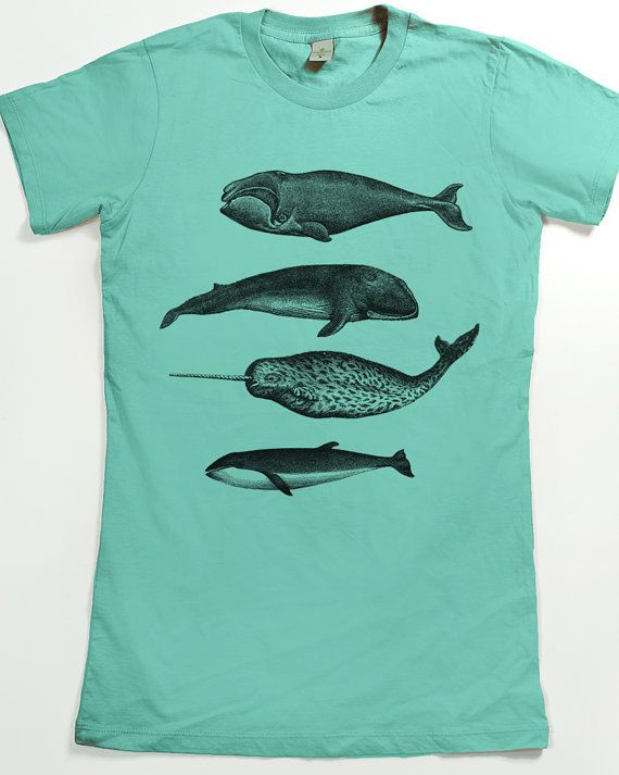Whale shirt  Women's Narwhal T-shirt  Graphic Tee by SlothWingTees