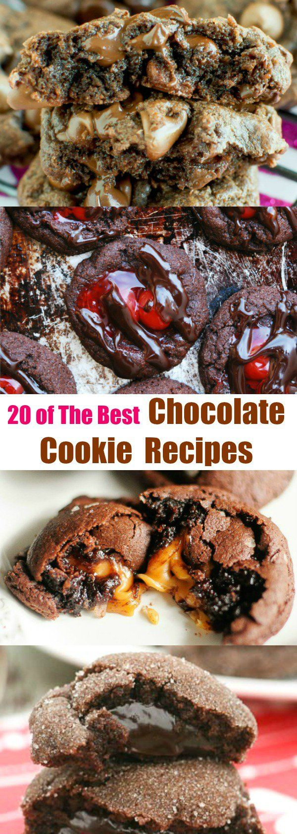20 of the Best Chocolate Cookie Recipes You Can Find!