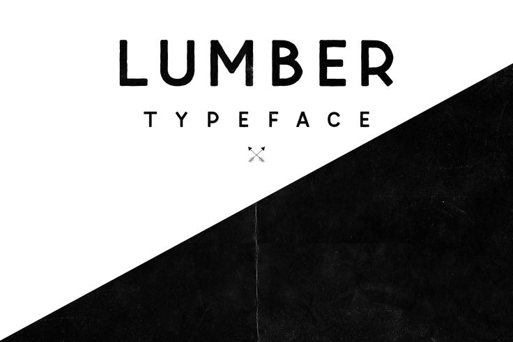 This is 1 of 1000s of beautiful Fonts, ready to use and waiting for you to download now at Envato Elements