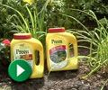 Weed Control | Garden & Landscape Tips from Preen.com