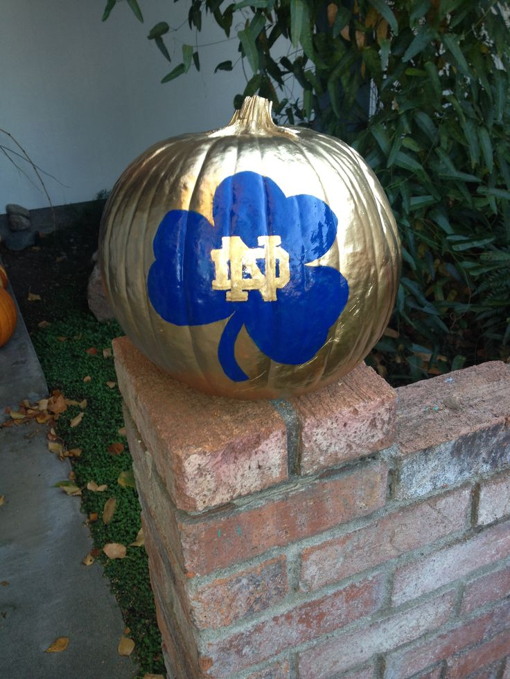 "Notre Dame pumpkin fun! Like the Irish? Be sure to check out and ""LIKE"" my…"