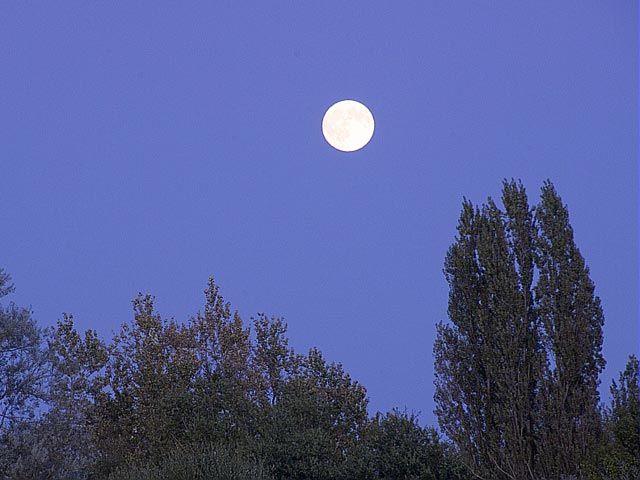 Les 25 meilleures id es de la cat gorie lune descendante - Lune montante et descendante ...