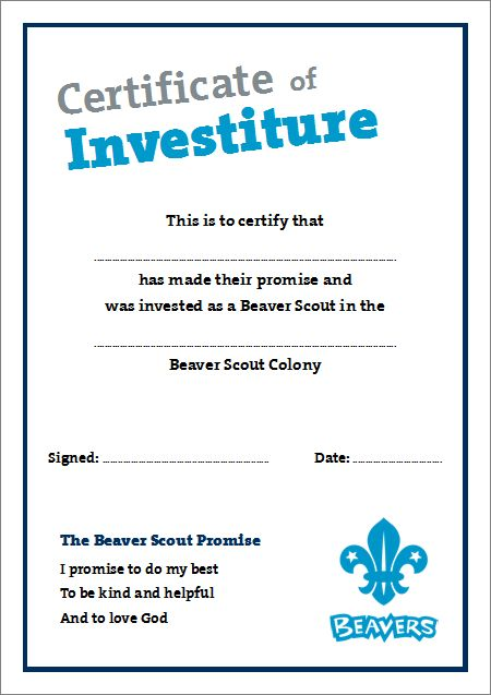 18 best Beaver Scouts Certificates images on Pinterest Beaver - best certificate templates