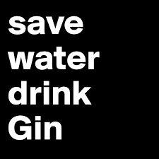 Bildergebnis für gin sprüche