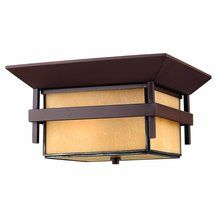 "View the Hinkley Lighting H2573 2 Light 12.25"" Width Outdoor Flush Mount Ceiling Fixture from the Harbor Collection at LightingDirect.com."