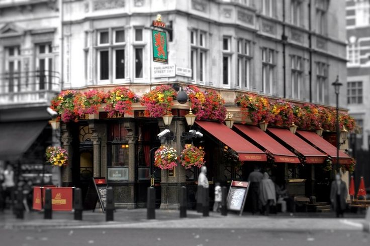 The Red Lion, 48 Parliament St, London SW1A 2NH