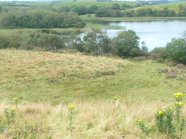 16 .51 Acres Non Residentail Land , Annagh, Castlebar, Co. Mayo - agricultural land for sale at price on application from Moran Auctioneers