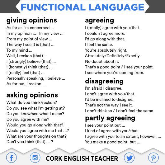 Resultado de imagen de cork english teacher