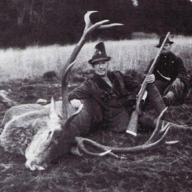 deer hunting essays