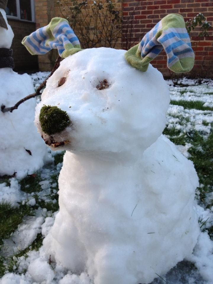 Essential companion for the snowman this winter... #snowdog