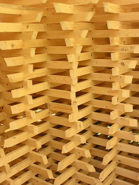 Wood structure detail by Jonas Lamis, via Flickr