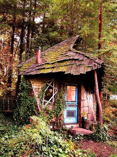 tiny house, blue door, forest, fairy, clapboard, shingles, overgrown