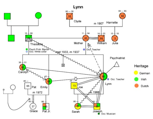 Genogram: Used to map a family and family dynamics/issues over multiple generations