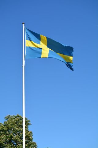 No Sweden Does Not Have the Highest Suicide Rate :   The nations of Scandinavia are quite amazing on many fronts. For example they have among the lowest rates of poverty in the world. All of their citizens enjoy excellent and free -- or rather tax-subsidized -- health care education vocational training and various social services. They are incredibly rich and prosperous nations but they share their wealth to such a degree that they are among the most equal societies on earth with a…