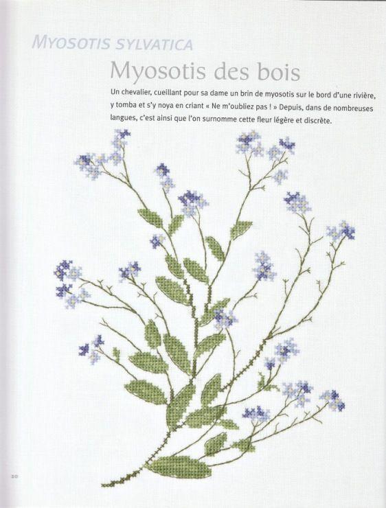 Gallery.ru / Фото #9 - Veronique Enginger. L'Herbier du jardin au point de croix - CrossStich