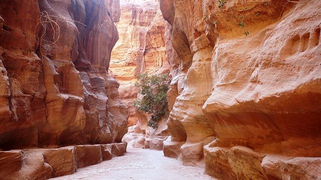 """Jordanie - Le sik, à quelques mètres du """"Trésor"""" de Petra."""