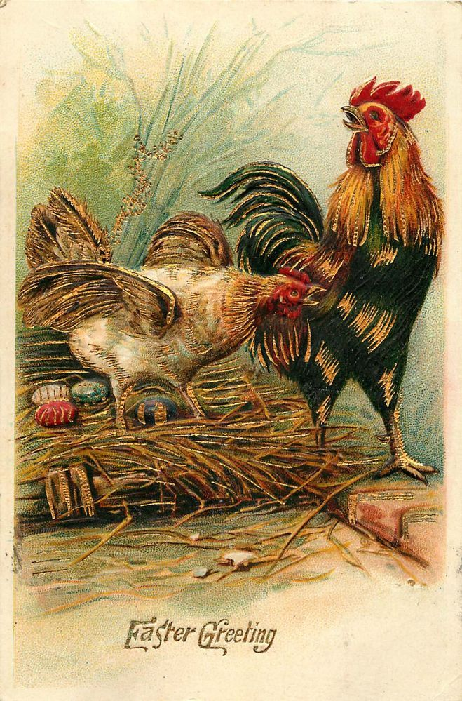 CHICKEN ROOSTER WITH EASTER EGGS EMBOSSED POSTCARD c1910