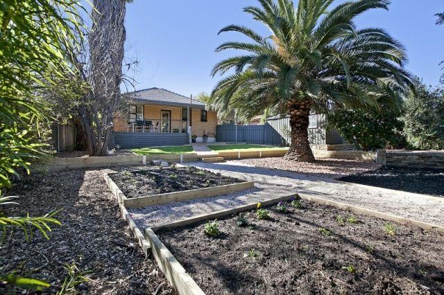 veggie garden & backyard