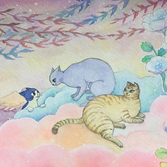 先日から描いていた、かぎしっぽのタマとお友達の絵、完成しました〜(*^o^*)虹の橋の向こうのあっちとこっちの混ざった場所。ふわふわ雲のお庭でくつろぐニャンに「こんにちは」とタマ。お友達になれたらいいな💖  #イラスト #イラストレーション #illustration #painting #水彩 #watercolor #猫 #cat #絵 #もとp #かわいい #虹の橋fukudamotoko2017/04/15 17:27:34