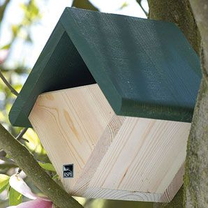 Bird box for robins and wrens