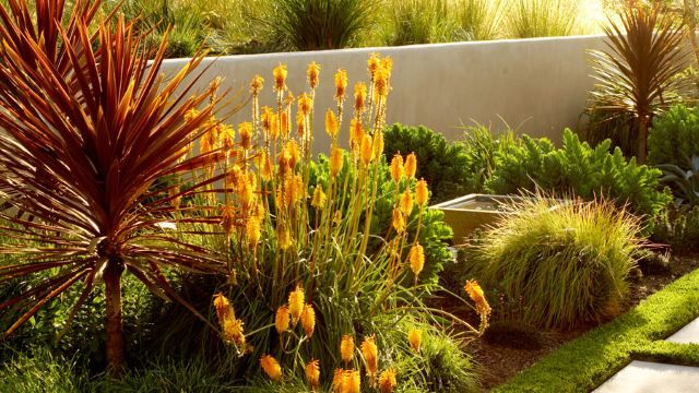 Don't have a lot of time or money to spend on all those autumn decorations? Plan in advance and plant flowers that will pop in brilliant fall colors. Fantastic oranges, yellows, ambers and browns can fill your landscaped area to invoke that fall feeling without lightening the wallet too much. The best part of that idea is that the plants will look good all year long and you'll know they'll look even better come the fall season.