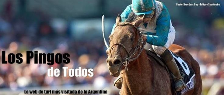 LOS PINGOS DE TODOS: The Flat, Horse Player, All