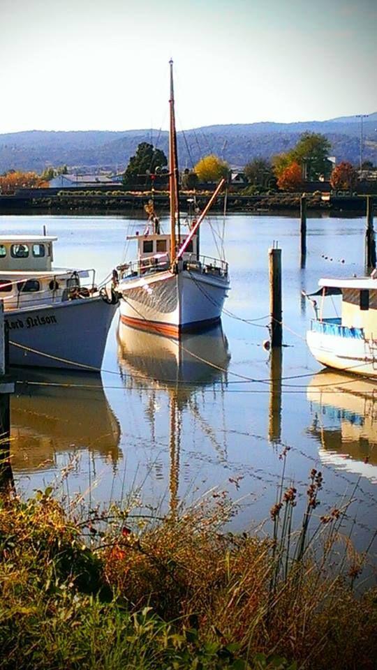 The Tamar River, Cataract Gorge and Seaport are must do's when in Launceston, Tasmania, Australia.