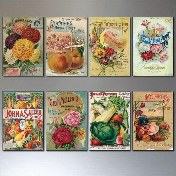Vintage Botanical / Horticultural seed packet fridge magnets - set of 8 - No.2