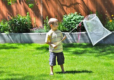 Homemade Butterfly Net from Little Birdie Secrets - Skip To My Lou Skip To My Lou