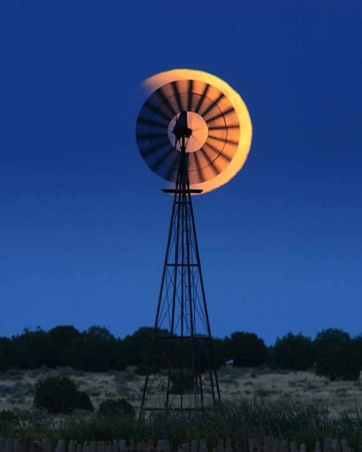 The moon and the Karoo windmill