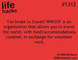1000 Life Hacks on Bloglovin