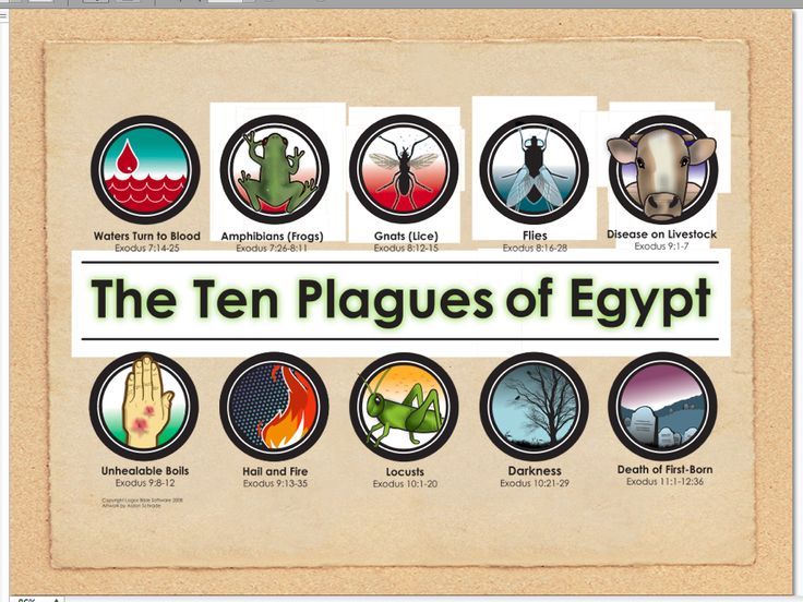 The Ten Plagues of Egypt : Biblical Holidays Passover infographic