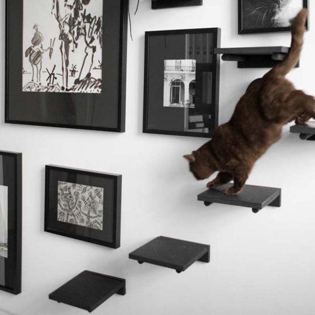 les 25 meilleures id es de la cat gorie mobilier pour chat sur pinterest lits pour chat mur. Black Bedroom Furniture Sets. Home Design Ideas