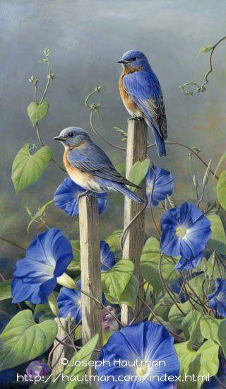 "©James Hautman  ""Bluebird Glories"""