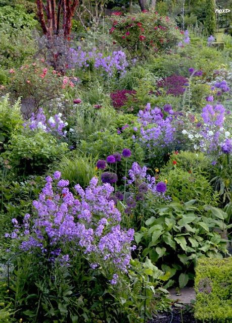 7 Steps to Creating a Quaint English Garden