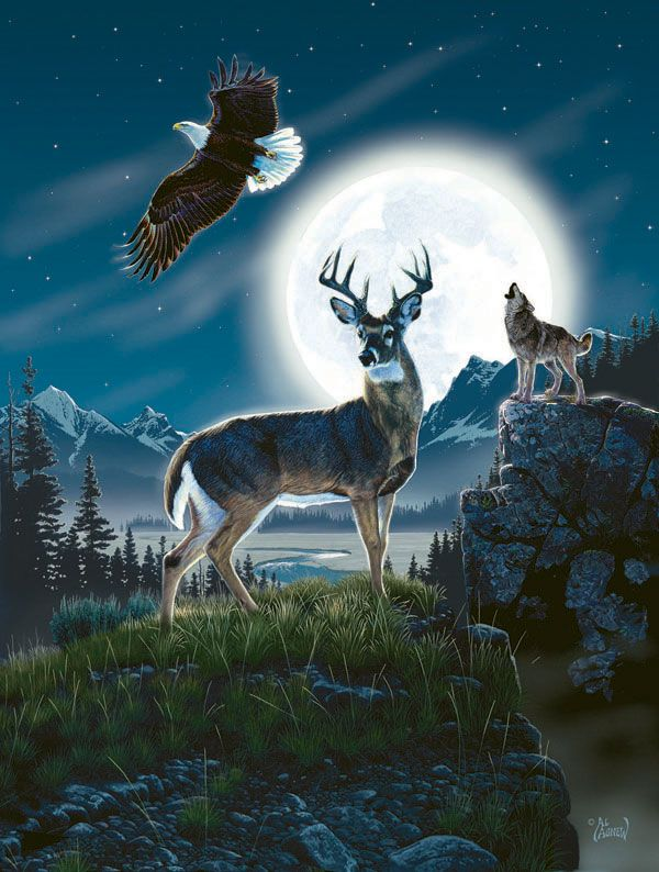 Call of the Night - 500 pieces. Released 2012. Sunsout puzzles are 100% made in the USA Eco-friendly soy-based inks Recycled boards Not sold in mass-market stores