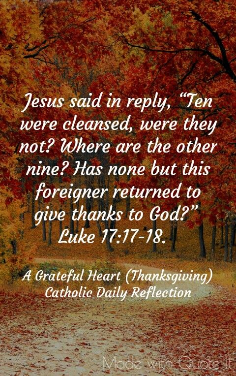 A grateful heart (Thanksgiving)  Catholic Daily Reflection