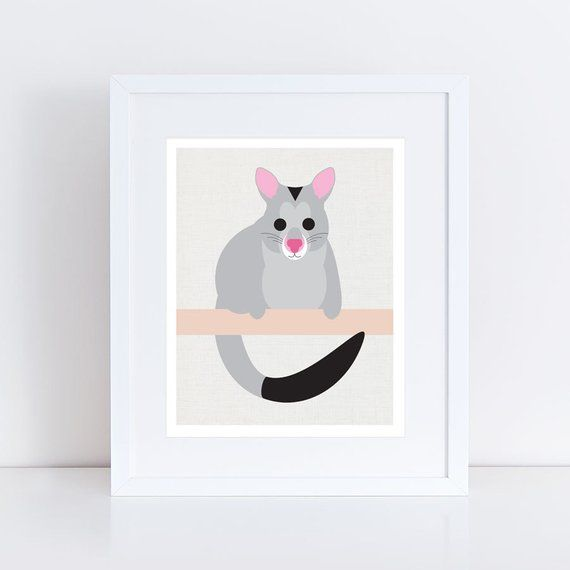 Possum Print Possum Art Australian Animal Art Nursery Art