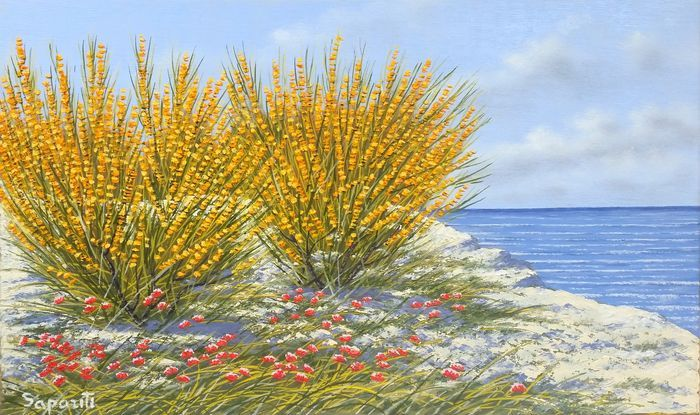 Marco Saporiti - Scotch brooms by the sea
