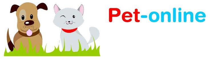 Pet-online: il tuo petshop #dogs #and #cats #for #adoption http://pet.remmont.com/pet-online-il-tuo-petshop-dogs-and-cats-for-adoption/  JavaScript seems to be disabled in your browser. You must have JavaScript enabled in your browser to utilize the functionality of this website. Stiamo aggiornando il nostro e-commerce: ci scusiamo se alcune pagine e funzioni sono in fase di lavorazione comunque possibile procedere normalmente con la navigazione e con gli ordini Pet-online.it Non hai…