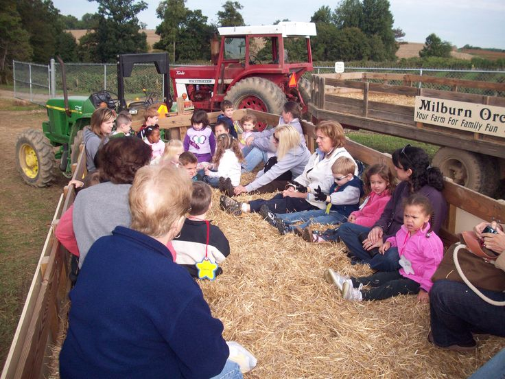 Class Hayride through the orchards.  Peaches, Grapes, Raspberries, Apples and more!