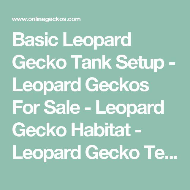 Basic Leopard Gecko Tank Setup - Leopard Geckos For Sale - Leopard Gecko Habitat - Leopard Gecko Terrarium Decor - Tile Substrate - Heating Pad