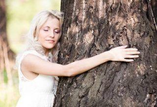 Как поправить здоровье с помощью деревьев?