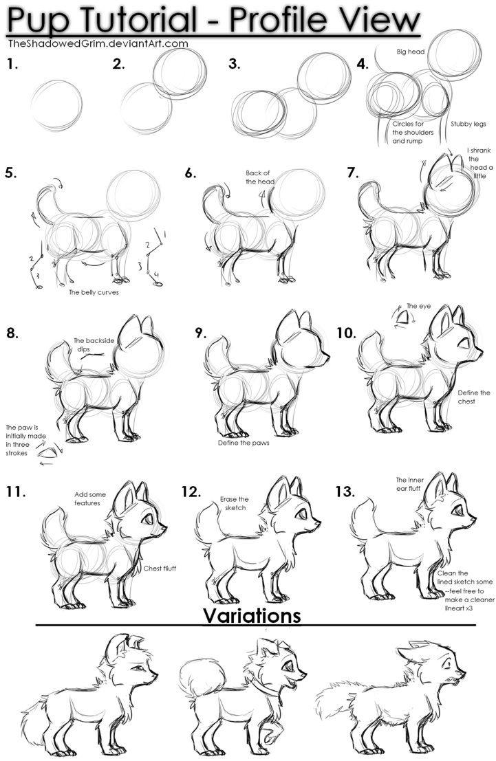 Cute... Inspiration: animals ( es gibt jetzt auch eine Pinnwand wie ihr süße Tiere zeichnet)