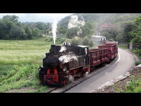 15:33.  Schmalspurbahn Brad -- Criscior HD Narrow Gauge Steam Railway Romania - YouTube