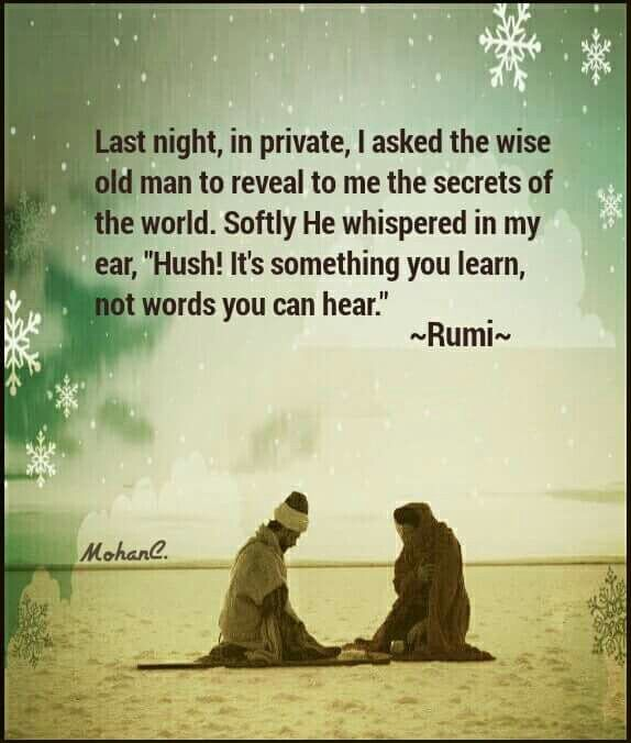 Last night, in private, I asked the wise old man to reveal to me the secret of the world. Softly he whispered, Hush!, in my ear: It's something you learn, not words you can hear. - Rumi  number 1022: From Rumi's Kolliyaat-e Shams-e Tabrizi