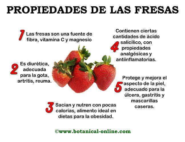 Resultado de imagen de propiedades de las fresas